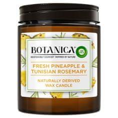 Air wick Botanica by svíčka - Svěží ananas a tuniský rozmarýn 205 g
