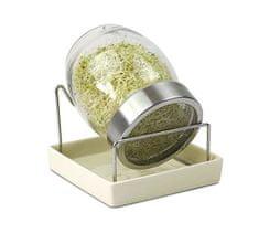 GEO kalilnik, kozarec + DARILO: seme za kaljenje
