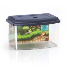 COBBYS PET Akvárium műanyag 2, tetővel és háttérrel 28x20x17,5cm 5,5l