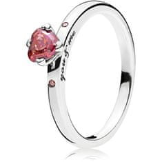 Pandora Stříbrný prsten You & Me 196574CZRMX (Obvod 52 mm) stříbro 925/1000