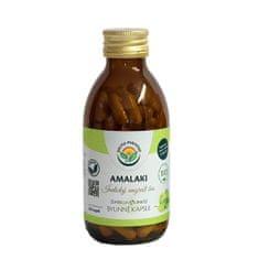 Salvia Paradise Amalaki kapsule (Varianta 120 ks)