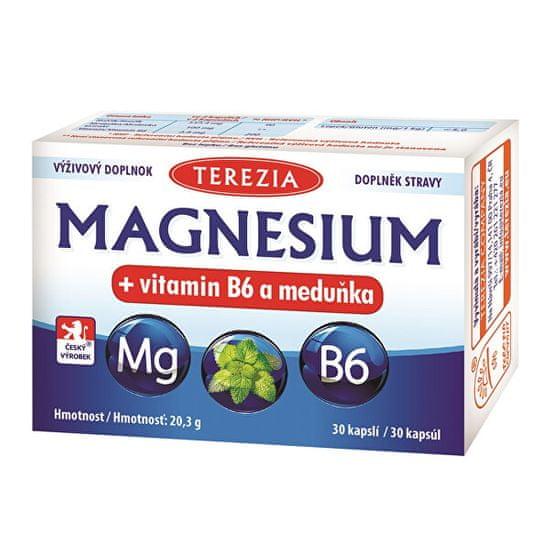 TEREZIA COMPANY Magnesium + vitamin B6 a meduňka 30 kapslí