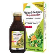 Salus Floradix Vitamín B komplex 250 ml