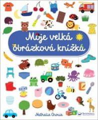 Moje velká obrázková knížka