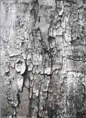 Berfin Dywany AKCE: 120x180 cm Kusový koberec Maksim 8606 Beige Grey 120x180