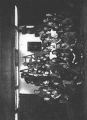 Bohumil Nekolný: Divadlo a společnost kolem roku 1989