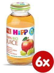 HiPP BIO Jablčno-hroznová šťava - 6x200ml