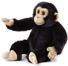 National Geographic Zvieratká z dažďového pralesa 770713 Šimpanz 36 cm