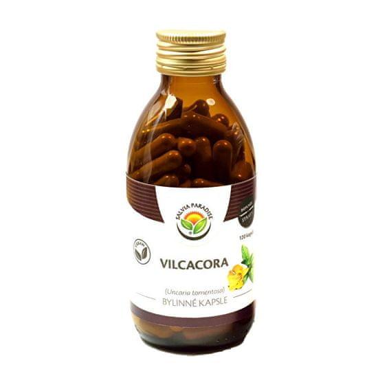 Salvia Paradise Vilcacora - Uncaria kapsle