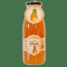 Slaskoukjidlu.cz Ananasový punč - zahřejte se tekutým ovocem, 500 ml, ananas