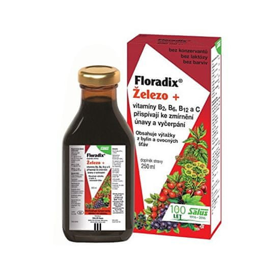 Salus Floradix železo + vitamíny B2, B6, B12 a C 250 ml