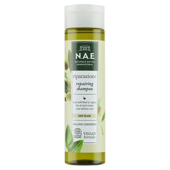 N.A.E. Regenerační šampon pro suché vlasy Riparazione (Repairing Shampoo) 250 ml