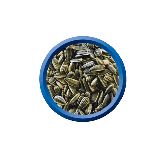 Fiory sončnična semena, 15kg