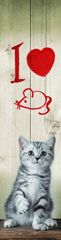 mapcards.net 3D záložka I love Mice