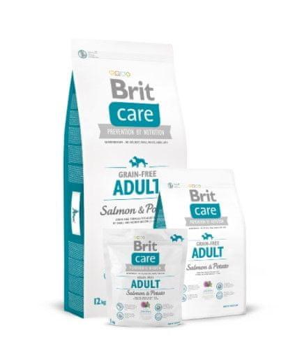 Brit Care Adult briketi za pse, losos in krompir, brez žitaric, 12+2 kg