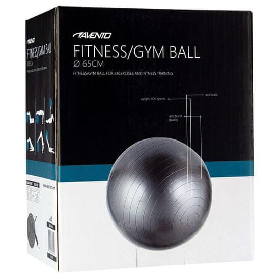 shumee Avento Fitnes žoga / gimnastična žoga premer 65 cm srebrna