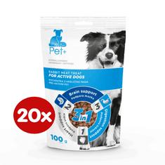 thePet+ przysmak dla psów Active Treat 20×100 g