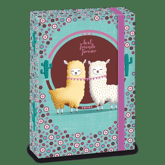 Ars Una Box na sešity Best Friends A5