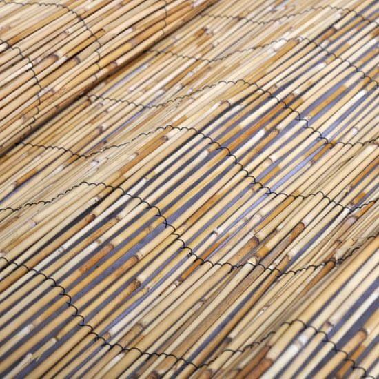 shumee Vrtna ograja iz trsja 150x1000 cm