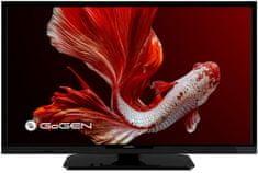 GoGEN telewizor TVH 24P452T