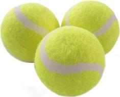 Donic Shildkrot Magic Sports set žogic za tenis, 3/1