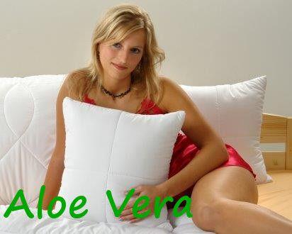 Brotex  Polštářek Aloe Vera 30x40cm 150g se zipem