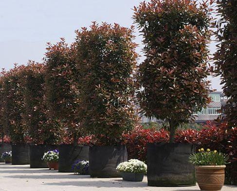 HomeOgarden PlantIN sadilna vreča, 128 L, črna