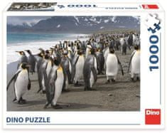 DINO puzzle Pingwiny 1000 elementów