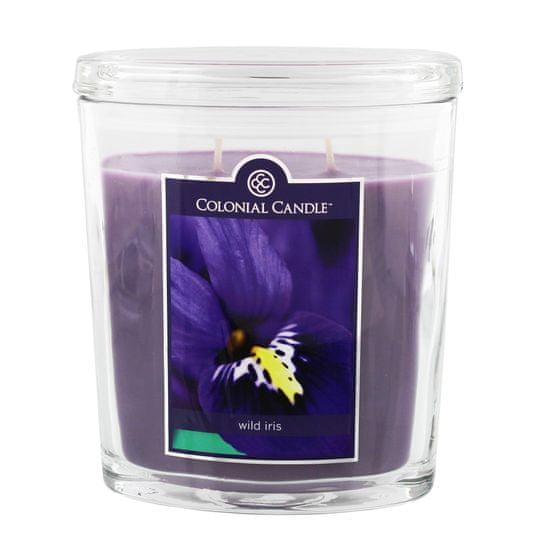 Colonial Candle Wild Iris mirisna svijeća, 623 g