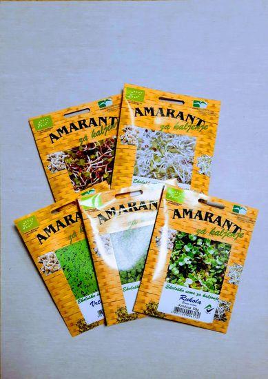 Amarant komplet eko semen za kaljenje, pekoči kalčki
