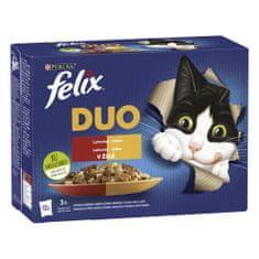 Felix Fantastic DUO masový výběr v želé 72 x 85 g