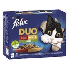 Felix Fantastic DUO masový výběr v želé se zeleninou 72 x 85 g