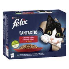 Felix karma dla kota Fantastic z kurczakiem, wołowiną, królikiem i jagnięciną w galarecie, 6(12x85g)