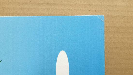 INFRADŮM Sálavý topný panel s potiskem 80x60cm, 500w. Lehce poškozeny levý horní roh –100% funkční.