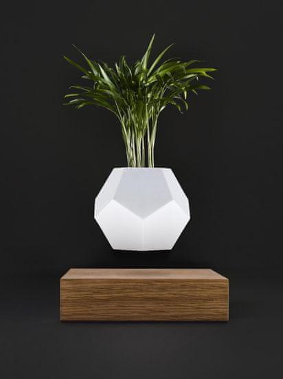 Flyte Levitující designový květináč LYFE Planter OAK