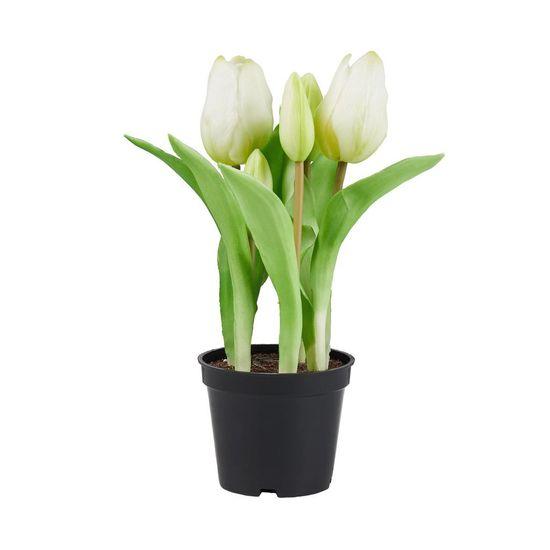 """Butlers Tulipány """"Real Touch"""" v květináči - krémová"""