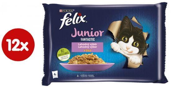 Felix hrana za mačke Fantastic Junior s piletinom i lososom u želeu, 12 (4x85 g)