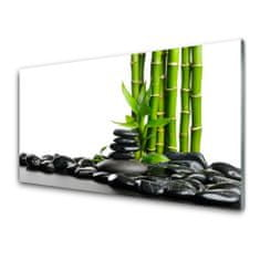 tulup.hu Konyhai hátfal panel Bamboo gyönyörű grafika 125x50cm