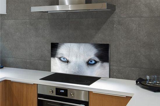 tulup.sk Nástenný panel wolf Eyes
