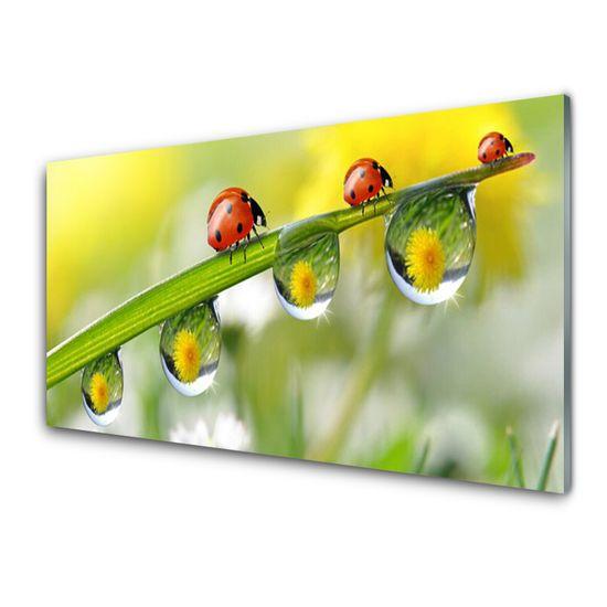 tulup.si Zidna obloga za kuhinju Leaf ladybugs narava