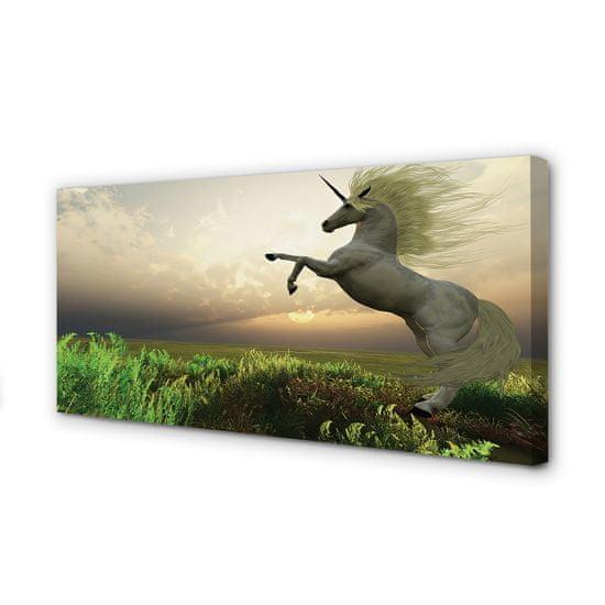 tulup.sk Obraz na plátne Unicorn Golf