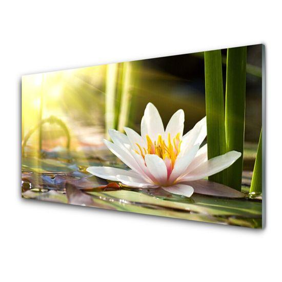 tulup.cz Skleneny obraz Kvet vodné lilie 125x50cm
