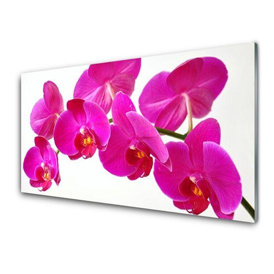 tulup.cz Nástenný panel Kvety rastlina 100x50cm