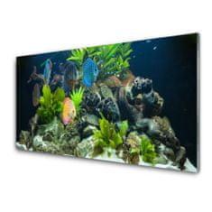 tulup.hu Modern üvegkép Hal akvárium Nature 120x60cm