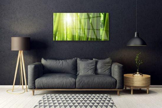 tulup.hu Modern üvegkép bambusz növény