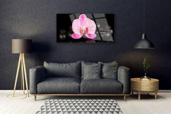 tulup.cz Skleneny obraz Kvet kamene rastlina 100x50cm