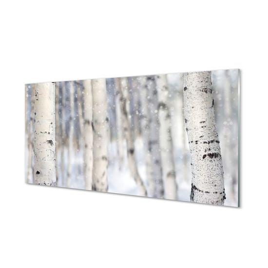 tulup.cz Nástenný panel Stromy v zime sneh 125x50cm