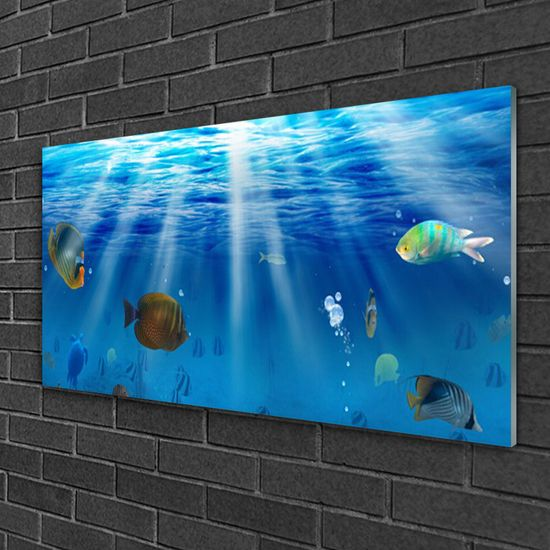 tulup.cz Obraz na akrylátovom skle Ryba príroda 100x50cm