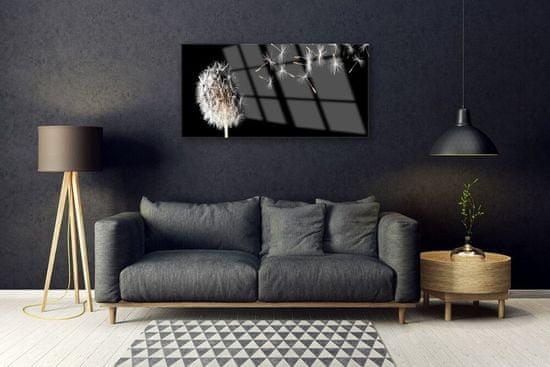 tulup.cz Skleneny obraz Púpava kvet kvapky 100x50cm