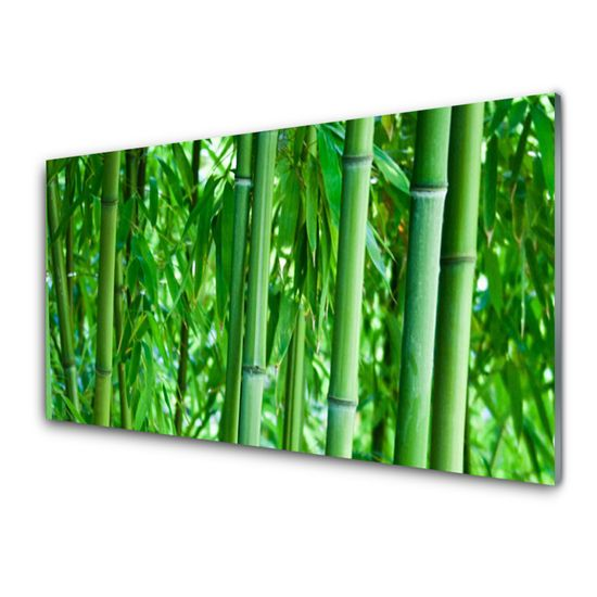 tulup.cz Obraz na skle Bambus stonka rastlina 100x50cm